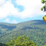 Mt Binaratan: The Silent Mountain of Maducayan