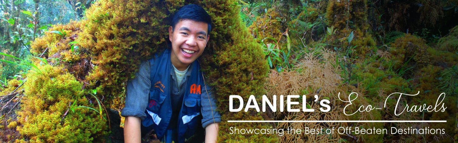 Daniel's Eco-Travels