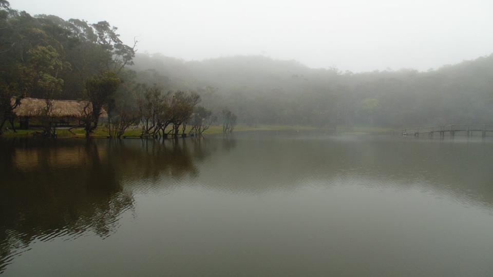 Misty Lake Tufub.