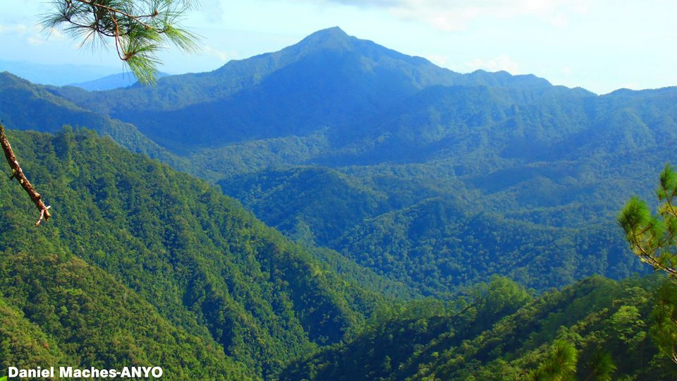 Forested-mountains of Lias, Barlig, Mountain Province