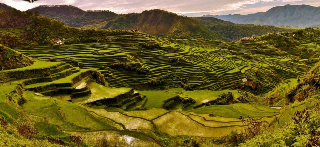 Maligcong Rice Terraces is one of the must-see tourist spots in Northern Luzon.