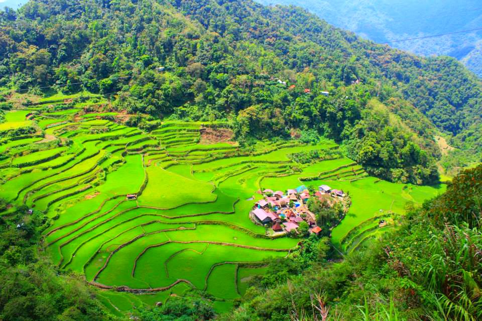 Bangaan Rice Terraces is one of the tourist spots in Banaue.