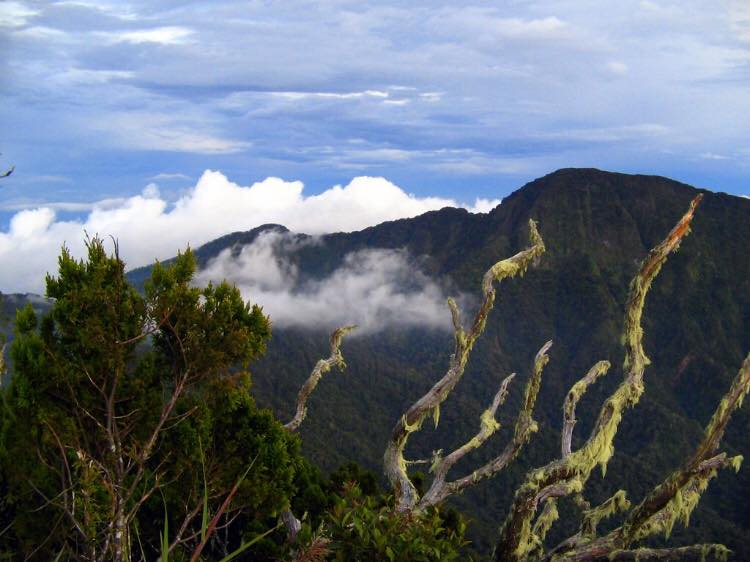 Mount Kitanglad is one of the top Bukidnon tourist spots.