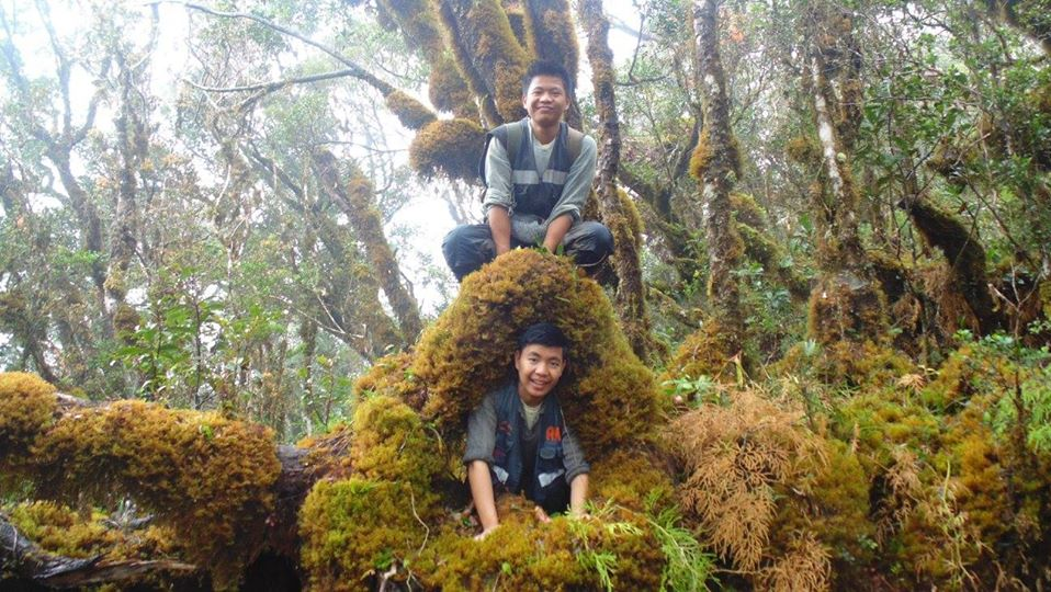 Enjoying Sayang Mossy Forest Philippines